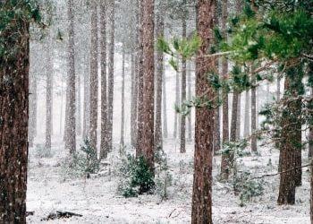 15 Ideen zum Entspannen für lange Winterabende