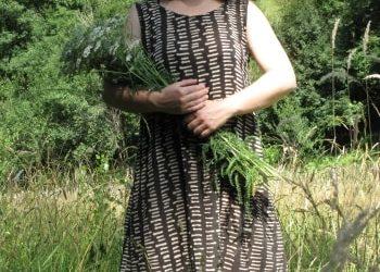 Essbare Wildkräuter sammeln: Tipps für Anfänger