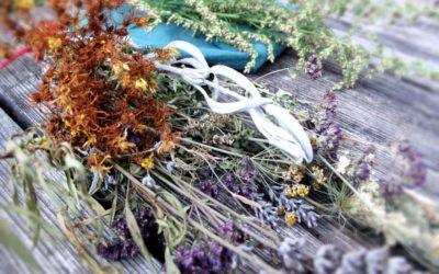Kalendrische Rituale und ihre magischen Pflanzen